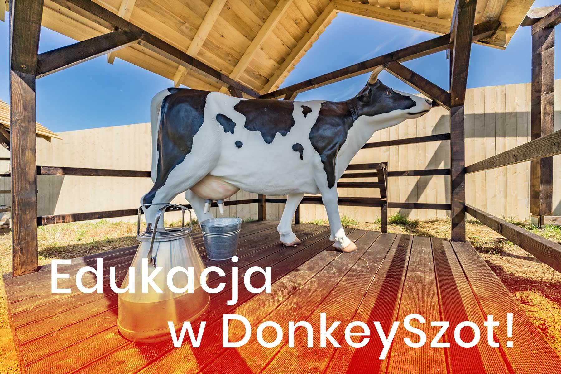 DonkeySzot Mini ZOO Rogozina