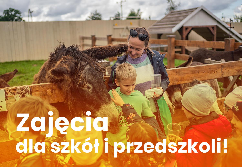 DonkeySzot Mini ZOO w Rogozine. zajęcia dla szkół i przedszkoli